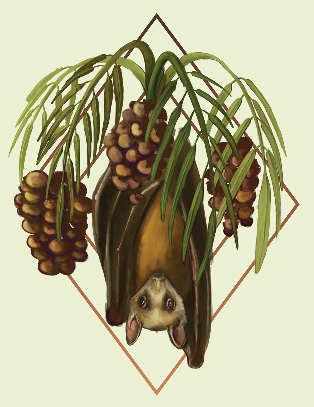 An illustration of a fruit bat with a date plant.